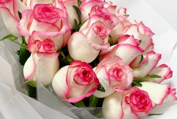 鮮花「吃干榨凈」深加工創造更大價值
