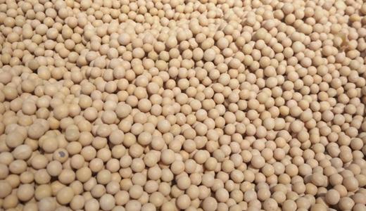 產量得到新突破 提取、膨化等技術深化大豆加工