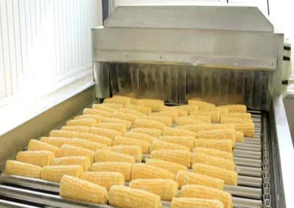 玉米加工流水線