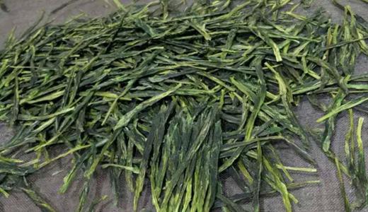 茶产业出现用工缺口 制茶设备协助生产