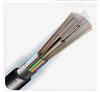 GYFTY 12芯光缆