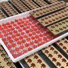 HQ-TG50上海合强枫叶软糖浇注设备 生产线 软糖模具
