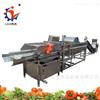 LJQX-1000根茎叶类清洗机蔬菜清洗设备流水线